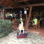 Foto van Marino Ballena Restaurant