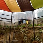Foto de Antigua Boreal