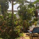 Tropical Islands Resort Foto