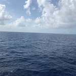 Wide open ocean as Baleària Caribbean cuts through the waters to Freeport, Bahamas