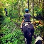 South Algonquin Trails Inc Photo