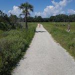 Foto di Botany Bay Plantation Heritage Preserve and Wildlife Management Area