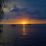 Foto de Sundowners
