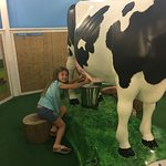 صورة فوتوغرافية لـ ‪Children's Hands-On Museum of Tuscaloosa‬