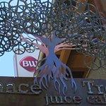 Фотография Peace Tree Juice Cafe