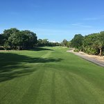 Foto de Iberostar Golf Club Playa Paraiso