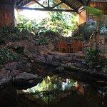 Foto van Duke's Kauai