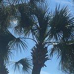 Foto de Charleston Grill