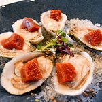 Oysters with bloody Mary gelee
