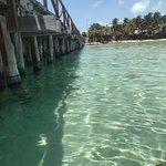 Foto de Caribbean Connection