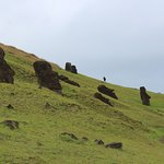Lush hills dotted with Moai.