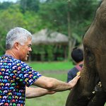 Fed elephants sugar cane and banana. Gave them Trunk massage.