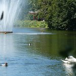 صورة فوتوغرافية لـ Victoria Park