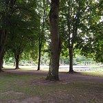 صورة فوتوغرافية لـ حديقة فيتزجيريلاد بارك