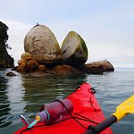 Kaiteriteri Kayaks resmi