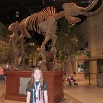 Woolly Mammoth at Entrance to Museum.
