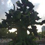 Bild från Jacques Cartier Park