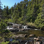 East Coast Trail (Middle Cove/Outer Cove/Logy Bay)