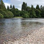 Bild från River Ness