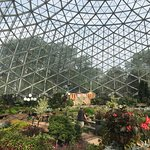 Foto van Mitchell Park Horticultural Conservatory (The Domes)
