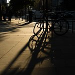Contre Jour shadows.