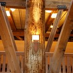 The HUGE timbers used to build the Ark