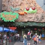 Rainforest Cafe의 사진
