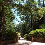 Sarah P. Duke Gardens의 사진