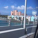 Photo of Fat Tuesday Nassau Bahamas