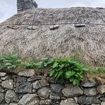 Blackhouse thatched roof