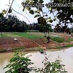Battambang Countryside Tour의 사진