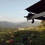 Cimory Mountain View Picture