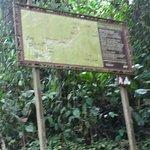 Foto de Parque Nacional do Itatiaia