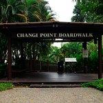 ภาพถ่ายของ Changi Point Boardwalk