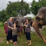 Con un elefante cariñoso / with a loving elephant