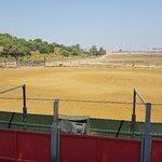 Foto di A Campo Abierto