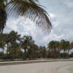 Crandon Park Beach의 사진