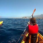 à la recherche de dauphins ...