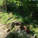 Photo of Sanzen-in Temple