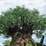Photo of Tree of Life
