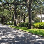 Photo of Savannah Historic District