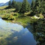 Foto de Lago Blu