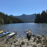 Photo of Tofino Sea Kayaking Day Tours