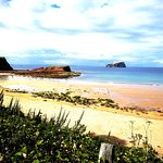 Bilde fra Seacliff Beach