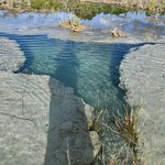 Estromatolitos en aguas cristalinas. Sistema frágil.