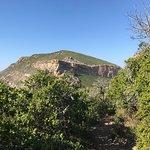 Φωτογραφία: Robberg Nature Reserve