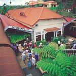 View of Kuranda Scenic Rail Kuranda Platform