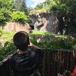 Foto de Busch Gardens