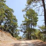 Автомобильная дорога на гору.