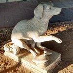 Foto de Lampo il cane ferroviere